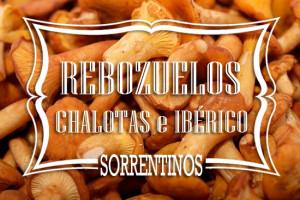 Sorrentinos de Rebozuelos Chalotas e Iberico